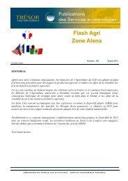 Flash Agri Zone Alena