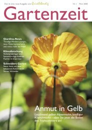 Anmut in Gelb - Winkler & Richard AG