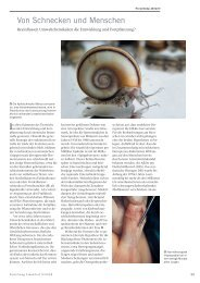 Von Schnecken und Menschen - Comprendo-project.org