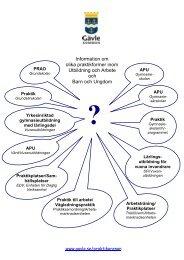 Information om olika praktikformer inom Utbildning ... - Gävle kommun