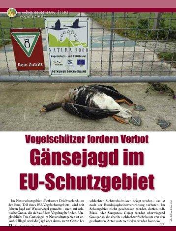 Vogelschutz - Magazin Freiheit für Tiere
