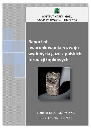 Raport nt. uwarunkowania rozwoju wydobycia gazu z polskich ...