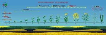 Bez tytułu-2 - FiN Agro Polska