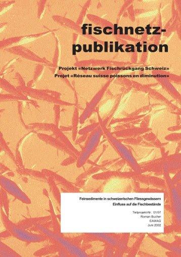 Feinsedimente in schweizerischen Fliessgewässern - Fischnetz