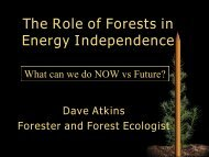 The Role of Forests in Energy Independence - Fuels for Schools and ...