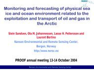 Monitoring and forecasting of physical sea ice and ocean ...