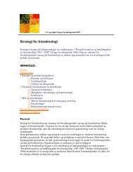 Forskningsrådets strategi for bioteknologi. - Norges forskningsråd