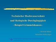 Technischer Hochwasserschutz und ökologische ... - Living-rivers.de