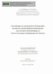 Untersuchungen zur neuroprotektiven Wirkung milder Hypothermie ...