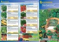 Kiepenkerl Profi-Line Pflanzen Naschgemüse - Volmary