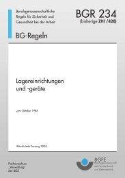 Berufsgenossenschaftliche Regeln BGR 234