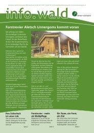 Forstrevier Aletsch Unnergoms kommt voran - ICH UND DER WALD