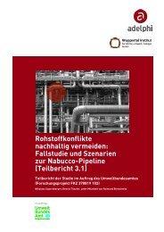 Fallstudie und Szenarien zur Nabucco-Pipeline - adelphi