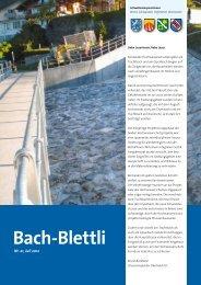 Nr. 21, Juli 2012 - schwellenkorporationen.ch