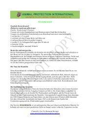 Kronenkranich - Akademie für Tierschutz