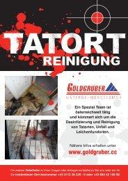 Die Arbeit nach dem Tod oder Unfall - Goldgruber.cc