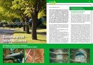 Download pdf - Michael Honds