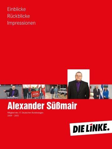 Einblicke - Rückblicke - Impressionen - DIE LINKE. Alexander ...