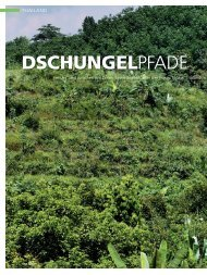 DSCHUNGELPFADE - Siam Bike Tours