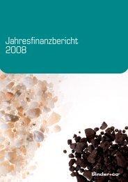 Jahresfinanzbericht 2008 - Binder+Co