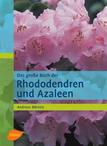 Leseprobe zum Titel: Das große Buch der ... - Die Onleihe