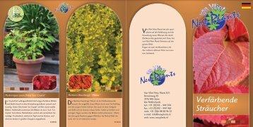 Verfärbende Sträucher - van Vliet New Plants