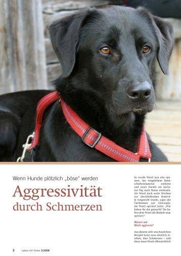 """Wenn Hunde plötzlich """"böse"""" - Leben mit Tieren"""