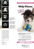 """Wenn Hunde plötzlich """"böse"""" - Leben mit Tieren - Seite 4"""