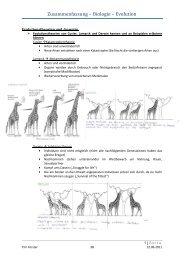 Zusammenfassung – Biologie – Evolution