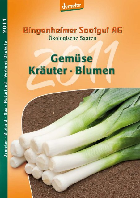Chinakohl Granaat Lagerfähige  Sommer Sorte,P.68 Salat Gemüse Kohl Samen