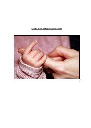 Kapitel 08.09: Entwicklungsbiologie III - Hoffmeister.it