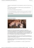 Udvidelse af svineproduktion på Skovsmindevej 18 - Naturstyrelsen - Page 2