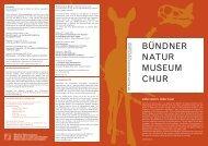 Ausgabe Nr. 41 Dezember 2011 - Bündner Naturmuseum