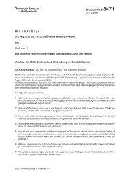 Die Kleine Anfrage und ihre Antwort als PDF - Grüne ...