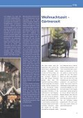 am Augustahospital Anholt - Misericordia GmbH ... - Seite 7