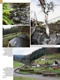 region - Page 3