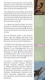 Die Dobben und die Westseite - Naturpark Dümmer - Seite 4