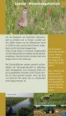 Die Dobben und die Westseite - Naturpark Dümmer - Seite 6