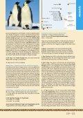 Antarktis - Seite 4