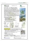 September 2010 - gemeinde-lang - Page 7