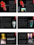 Atmung • Atemapparat, obere und untere Atemwege • Nase und ... - Seite 4