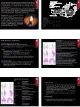 Atmung • Atemapparat, obere und untere Atemwege • Nase und ... - Seite 7