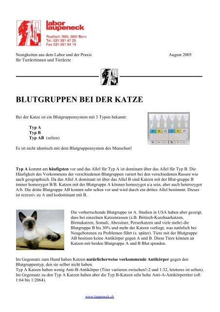 BLUTGRUPPEN BEI DER KATZE - Labor - Laupeneck