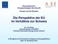 Impulsreferat 1: EU-Perspektive - Agentur für Erneuerbare Energie ...
