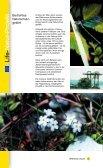 Umweltfolder - Bregenz - Seite 6
