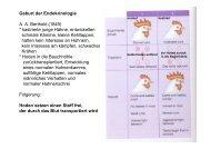 Geburt der Endokrinologie AA Berthold (1849) - Institut für Biologie ...