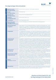 Vermögensanlagen-Informationsblatt BlueTectum Select GmbH ...