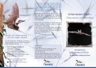 Faltblatt - NABU Osterode