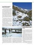 Der türkische Jagdvermittler, den wir auf der Messe in ... - Schottland - Seite 5