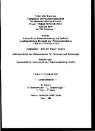 topographic - Prof. Dr. Rainer Kuhlen